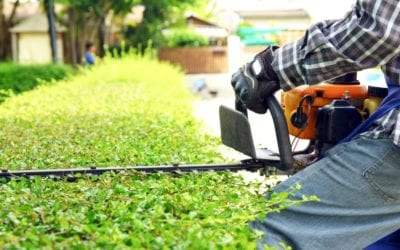 Tips to Stay Safe While Doing Yard Work